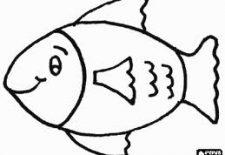 balık 225x155 - Balık