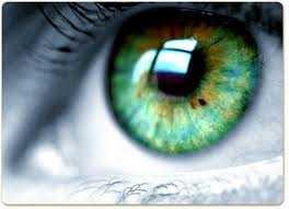 göz - Göz