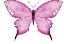 kelebek 225x155 - Kelebek