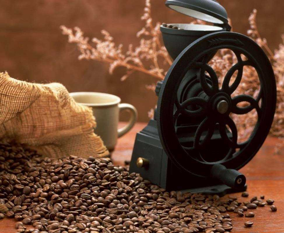 kahve makinası - Kahve Makinası
