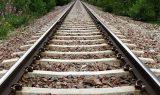 tren 160x95 - Ray