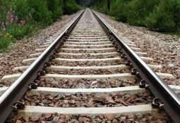 tren 255x175 - Ray