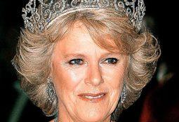 gerçek kraliçe tacı örnekleri 255x175 - Kraliçe