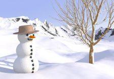 kardan adam 225x155 - Kardan Adam