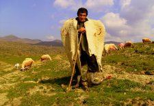 1643896 kepenekli coban usak asagikaracahisar koyu 225x155 - Çoban