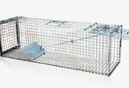 CY 103 buyuk kedi yakalama kafesi 255x175 - Tuzak