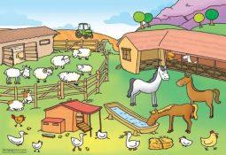 hqdefault 255x175 - Çiftlik