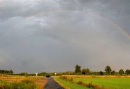 Regenbogen gesamt 255x175 - Gökkuşağı