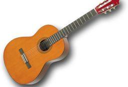 dante 3905 255x175 - Gitar