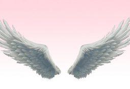 melekkanadı 255x175 - Kanatlı Melek