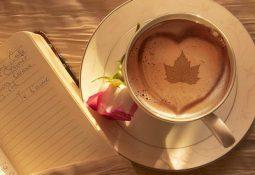 kahve falinda cinar yapragi gormek 255x175 - Çınar Yaprağı