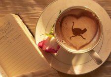 kahve falinda deve kusu gormek 225x155 - Deve Kuşu