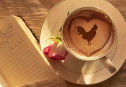 kahve falinda horoz ve kalp gormek 255x175 - Horoz ve Kalp