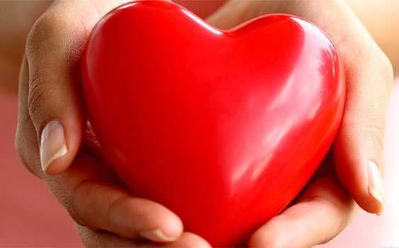 kahve falinda kalp organi gormek - Kalp Organı