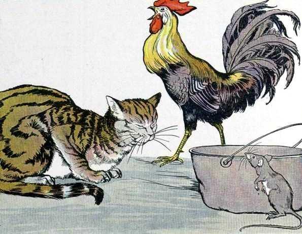 kahve falinda kedi ve horoz gormek - Kedi ve Horoz