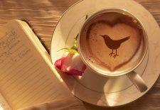kahve falinda kusun agzinda kalp paket mektup gormek 225x155 - Kuşun Ağzında Kalp, Paket, Mektup