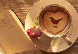kahve falinda kusun agzinda kalp paket mektup gormek 255x175 - Kuşun Ağzında Kalp, Paket, Mektup