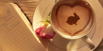 kahve falinda tavsan ve at gormek 350x175 - Tavşan ve At