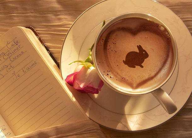 kahve falinda tavsan ve at gormek - Tavşan ve At