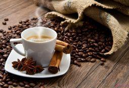 kahve falinda yilan kafasi gormek 255x175 - Yılan Kafası
