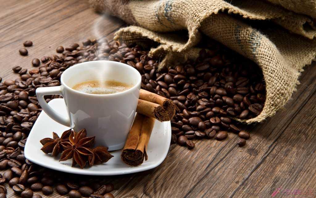 kahve falinda yilan kafasi gormek - Yılan Kafası