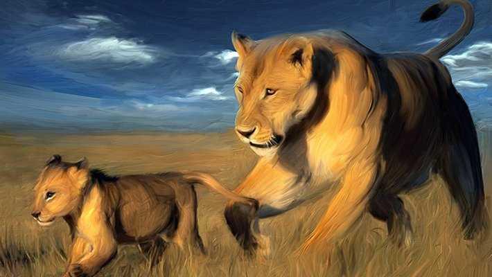 aslan yavrusu - Rüyada aslan görmek