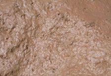 mud closeup 225x155 - Rüyada Çamur Görmek